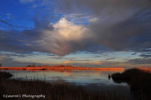 clouds sunrise landscape md nikon maryland easternshore wetlands tilghman chesapeakebay tilghmanisland talbotcounty knappsnarrows d700 laurensphotography lauren3838photography