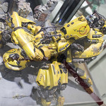 GBWC2014_World_representative_exhibitions-8