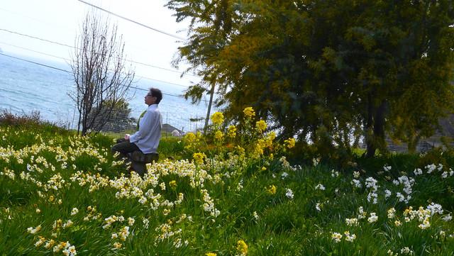 Spring wandering