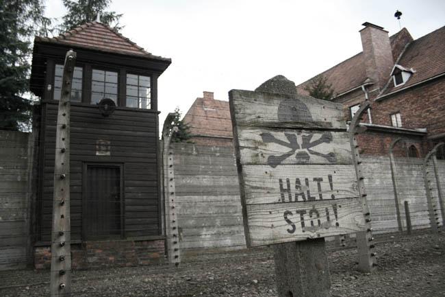 Auschwitz. © Paco Bellido, 2008