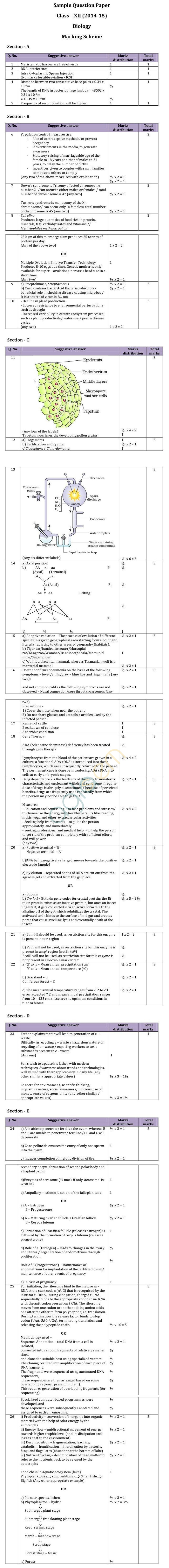 CBSE Class XII Marking Scheme 2015 for Biology