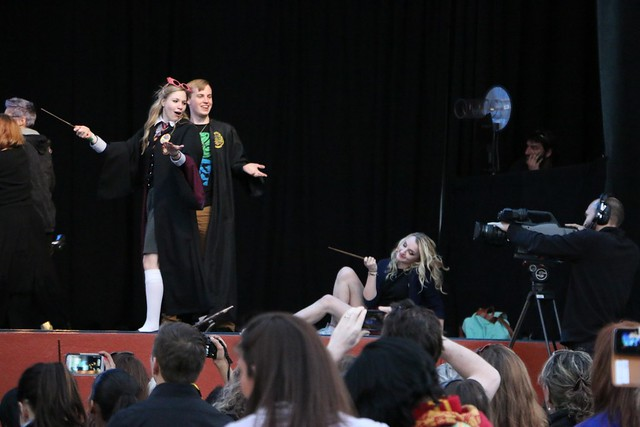 A Celebration of Harry Potter 2015 at Universal Orlando