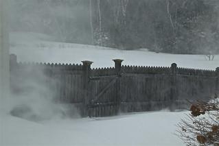 January Blizzard 02