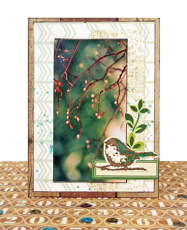 Stokely_spring card1