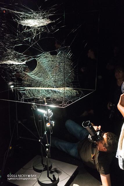 Spider Webs by Tomás Saraceno - DSC05339
