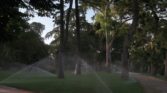Sprinklers at Parque Retiro, Madrid (2016)