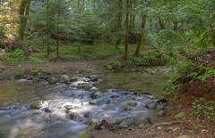 Fall Creek Felton, Ca