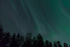 Awesome Night with the Auroras Borealis in Oulu