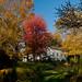 Troutbeck Farm in autumn