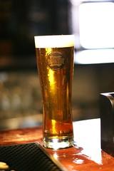 ale, alcohol, beer glass, distilled beverage, liqueur, glass, beer cocktail, drink, pint (us), beer, alcoholic beverage,