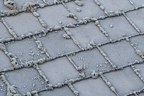 Frosted roof