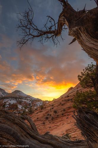 Sunset near Checkerboard Mesa