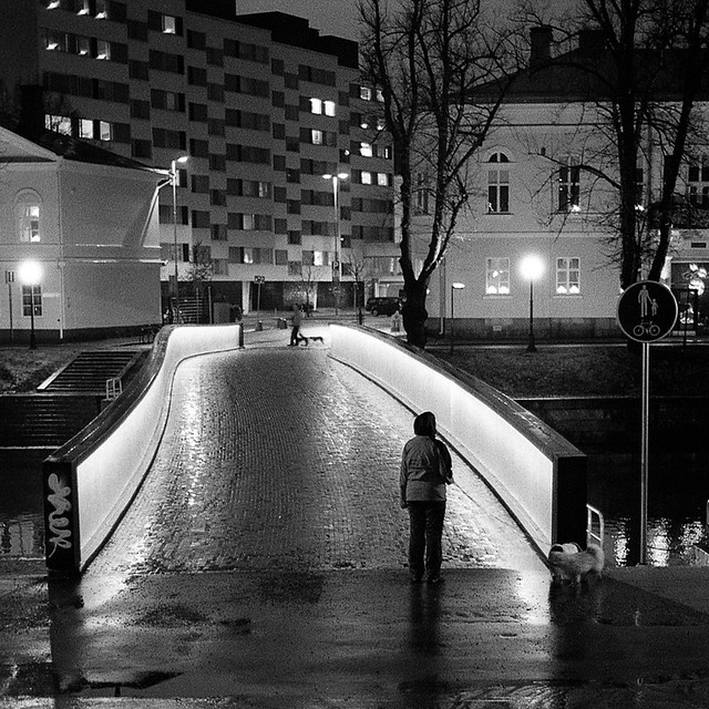 Walking the dogs. Library bridge, Turku
