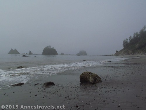 One of the sadier sections of the beach north of Strawberry Point, Olympic National Park, Washington