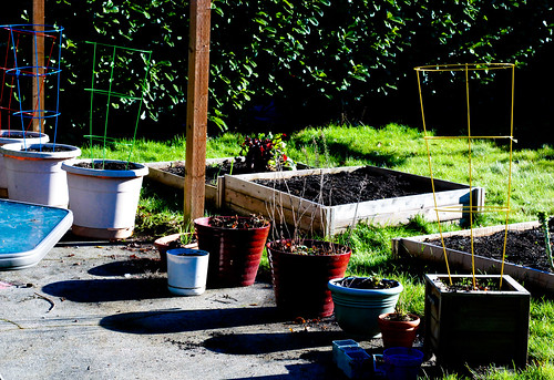 gardenafter1