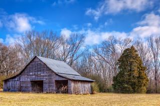 Mottled Barn
