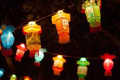 花灯,华灯 festive lantern