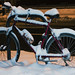 Frozen Bicycle