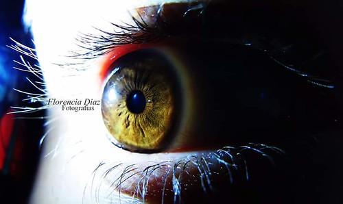 The most important thing is not the camera if not the eye.  Lo mas importante no es la cámara, sino el ojo.