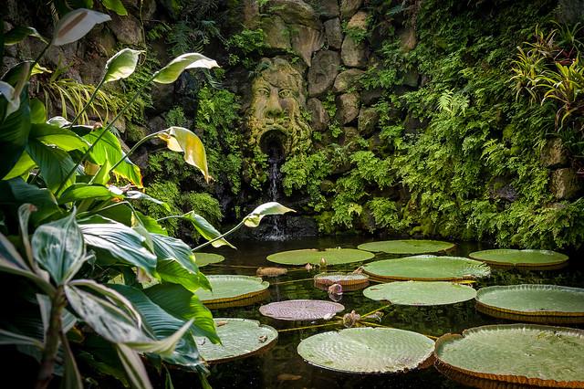 Garden La Mortella