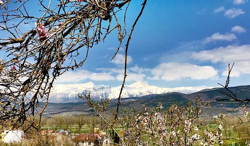Sullo sfondo Pizzo Cefalone, e Monte Corvo (gruppo G.Sasso)