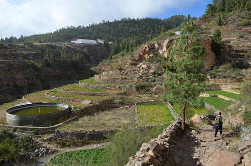 Camino de Chasna, Vilaflor