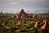 Some of the many temples and pagodas of Bagan