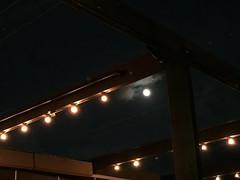 A Maui Full Moon - Fleetwoods