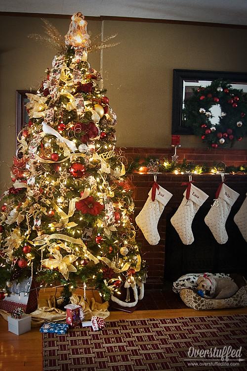 IMG_0698 Christmas 14 web