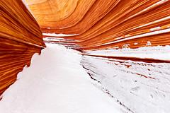 Wave Winter Wonderland (1-1-15)