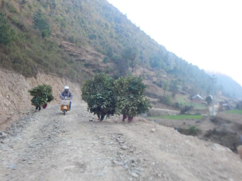 150207 Kathmandu (79) (2304 x 1728)