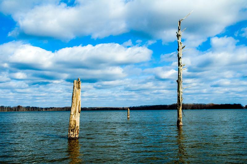 Hovey Lake Fish & Wildlife Area - January 6, 2015