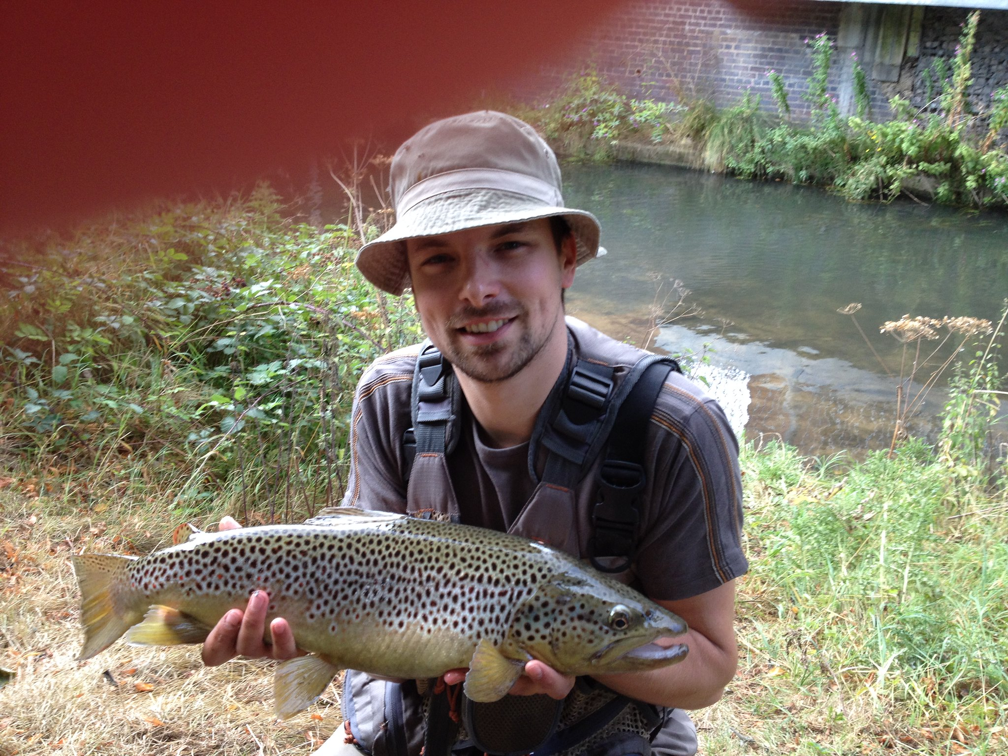 5lb 6oz Wild brown trout