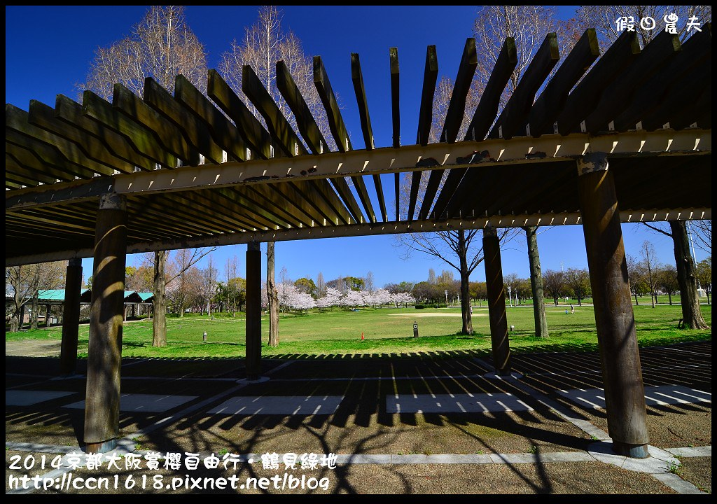 2014京都大阪賞櫻自由行.鶴見綠地DSC_1348