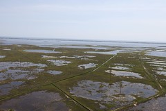 Aerial view of E.B. Forsythe National Wildlife Refuge, where hundreds of unused utility poles will be removed to enhance 600 acres of salt marsh habitat. Credit: Keith Shannon/USFWS