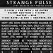 STRANGE PULSE - Zine Release/Art/Photo Show by TRUE 2 DEATH