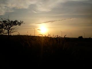 SANY0258: Sunset @ BITS Pilani-Goa Campus