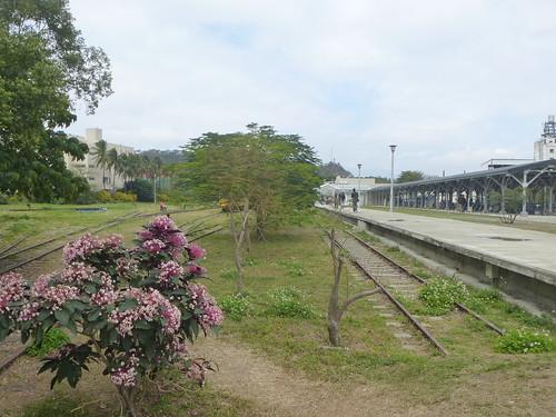 Ta-Taitung-ville (8)