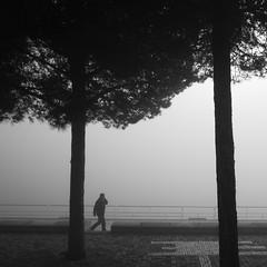 Chasing Fog in Lisbon