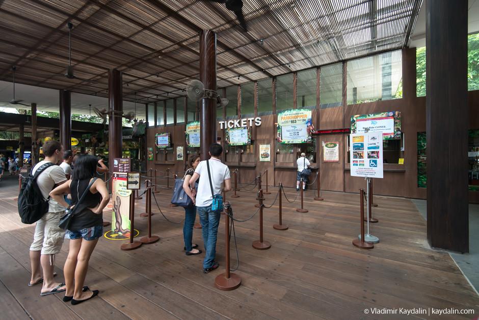 Билеты в зоопарк Сингапура