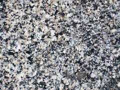 Granodiorite (Giant Forest Granodiorite, mid-Cretaceous, 97-102 Ma; Moro Rock, Sequoia National Park, California, USA) 1