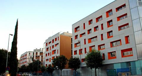 VPO San Bernardo