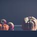 Pumpkins & Apples by John_Lundhgren