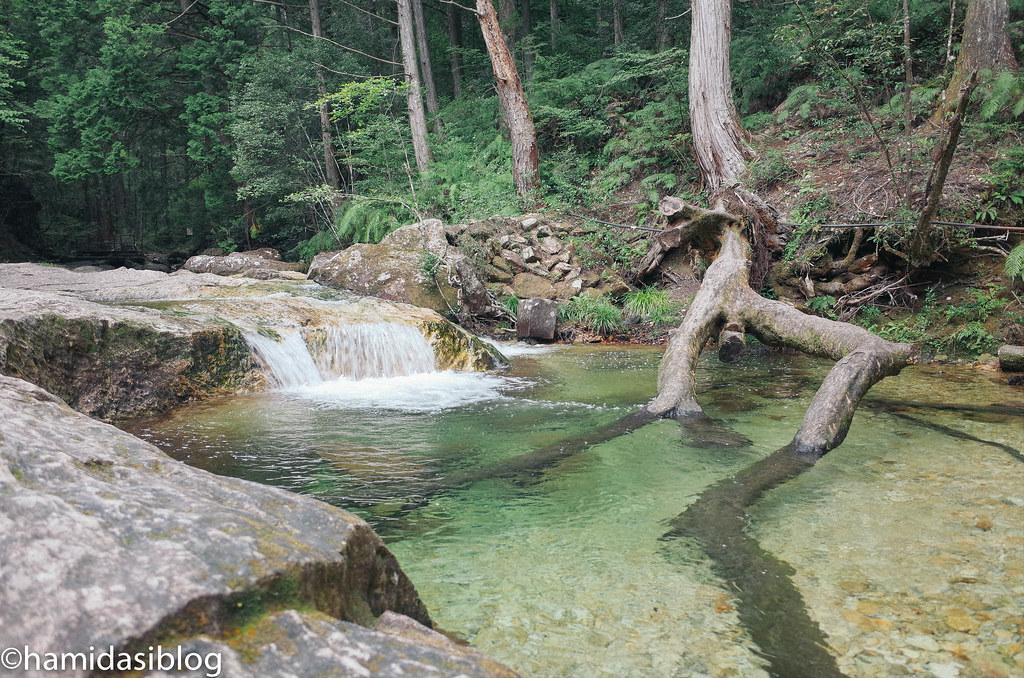 清流と岩と緑