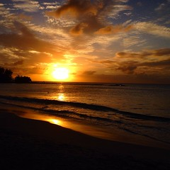 #sunset #beach #caribbean #paradise #barbados