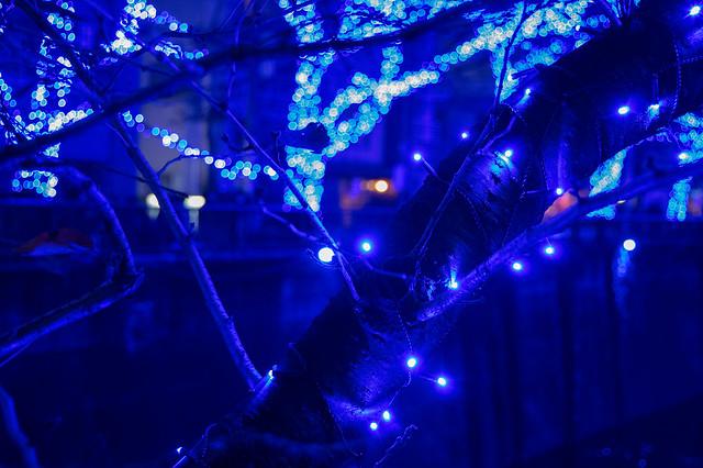 Nakameguro 青の洞窟