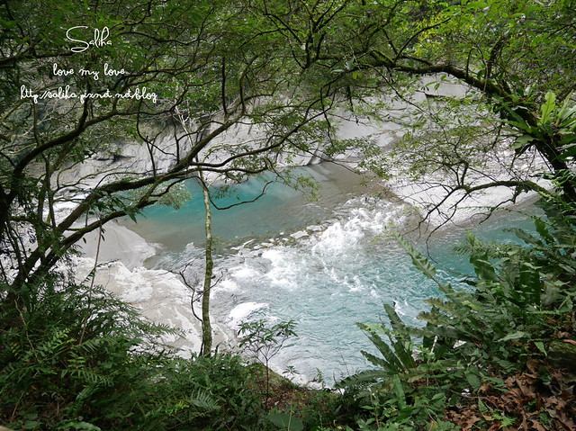 烏來景點內洞森林遊樂區 (2)