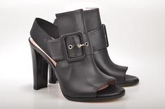 footwear, leather, buckle,