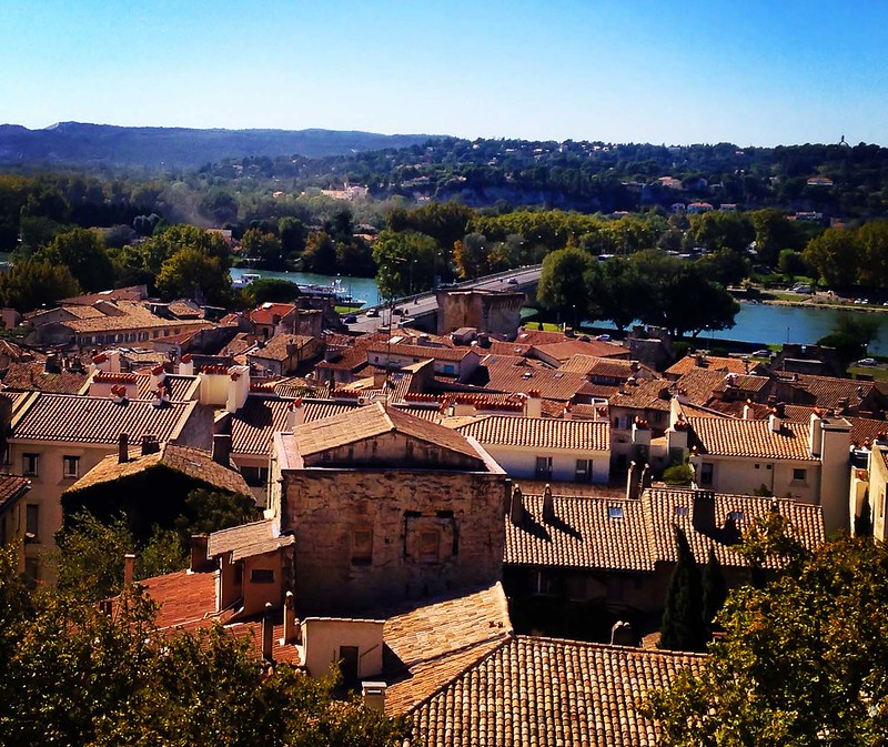 Avignon Rooftops and Rhône from Palais des Papes