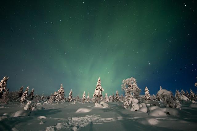 Aurore nella tundra
